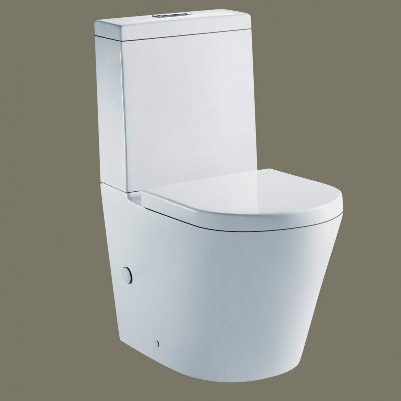 Bellevue Wall Faced Toilet
